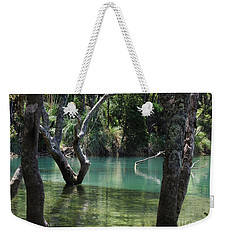 Weekender Tote Bag featuring the photograph Mangrove Mystique by Dianne  Connolly
