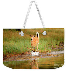 Weekender Tote Bag featuring the photograph Off To The Races by Adam Jewell