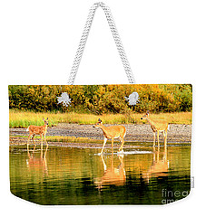Playing In Fishercap Weekender Tote Bag by Adam Jewell