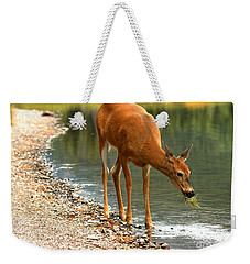Weekender Tote Bag featuring the photograph A Healthy Mouthful by Adam Jewell