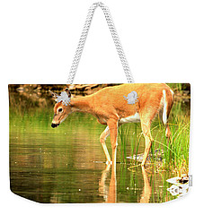 Weekender Tote Bag featuring the photograph Deer Reflections In Fishercap by Adam Jewell