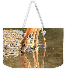 Weekender Tote Bag featuring the photograph Deer Reflections by Adam Jewell
