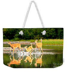 Weekender Tote Bag featuring the photograph Glacier Family Jog by Adam Jewell