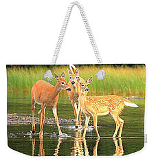 Weekender Tote Bag featuring the photograph Many Glacier Family Portrait by Adam Jewell