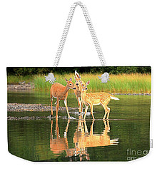 Weekender Tote Bag featuring the photograph Fishercap Family Portrait by Adam Jewell