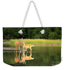 Weekender Tote Bag featuring the photograph Fishercap Family Gathering by Adam Jewell
