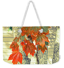 Weekender Tote Bag featuring the photograph Maple by Ronda Broatch
