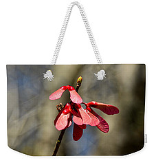 Weekender Tote Bag featuring the photograph Maple Spring by Linda Brown