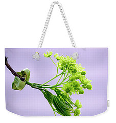 Maple Tree Flowers Weekender Tote Bag