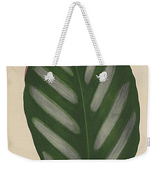 Maranta Porteana Weekender Tote Bag by English School