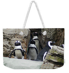 Weekender Tote Bag featuring the photograph March Of The Penguins by B Wayne Mullins