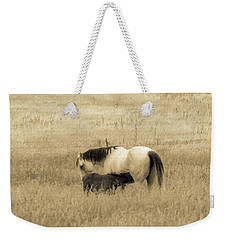 Mare And Foal  Weekender Tote Bag by Dawn Romine