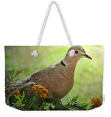 Weekender Tote Bag featuring the photograph Marigold Dove by Debbie Portwood