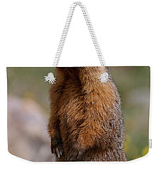 Weekender Tote Bag featuring the photograph Marmot by Gary Lengyel
