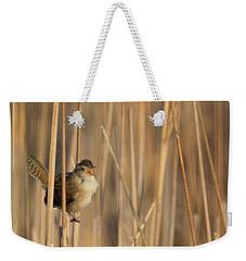 Marsh Wren Square Weekender Tote Bag