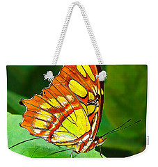 Marvelous Malachite Butterfly Weekender Tote Bag