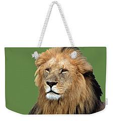 Masai Mara Lion Portrait    Weekender Tote Bag