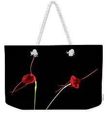 Weekender Tote Bag featuring the photograph Masd Cheryl Shohan by Catherine Lau