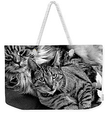 Weekender Tote Bag featuring the photograph Master And Apprentice by Roger Bester