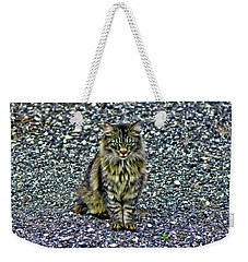 Mattie The Main Coon Cat Weekender Tote Bag