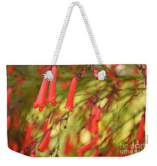 May The Light Lead You The Way Weekender Tote Bag