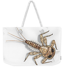 Mayfly Larva Nymph Rithorgena Ecdyonurus Venosus - Moscas De May Weekender Tote Bag