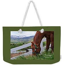 Mccool Grazing Weekender Tote Bag