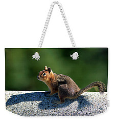 Weekender Tote Bag featuring the photograph Me And My Shadow by Sharon Talson