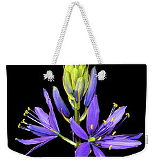 Meadow Hyacinth 002 Weekender Tote Bag by George Bostian