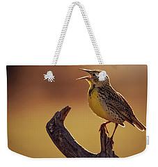 Meadowlark Weekender Tote Bag