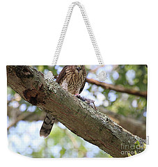 Mean Hawk At Dinner Time Weekender Tote Bag