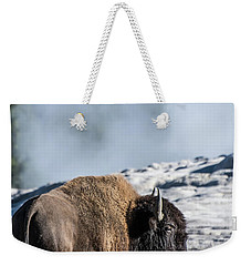 Weekender Tote Bag featuring the photograph Meandering by Colleen Coccia