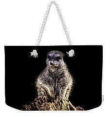 Meerkat Lookout Weekender Tote Bag