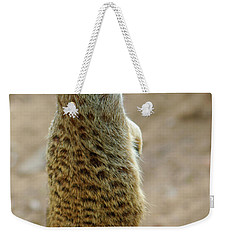 Meerkat Portrait Weekender Tote Bag by Carlos Caetano