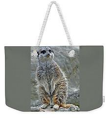 Meerkat Poses Weekender Tote Bag