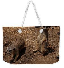 Weekender Tote Bag featuring the photograph Meerkats by Chris Flees
