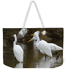 Weekender Tote Bag featuring the photograph Meeting Of The Egrets by George Randy Bass