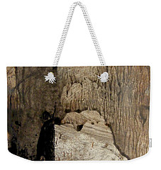 Weekender Tote Bag featuring the painting Melancholy  by Nancy Kane Chapman