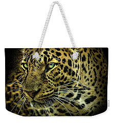 Weekender Tote Bag featuring the photograph Menace by Brian Tarr
