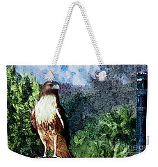Weekender Tote Bag featuring the photograph Menifee Falcon by Rhonda Strickland