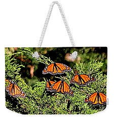 Weekender Tote Bag featuring the photograph Migrating Monarchs by AJ Schibig