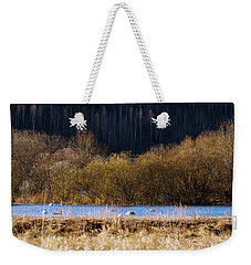 Migrating Swans Resting In Spring 2017 Weekender Tote Bag