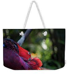 Miksang 4 Parrot Weekender Tote Bag