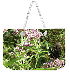 Male American Swallowtail Papilio Polyxenes Weekender Tote Bag