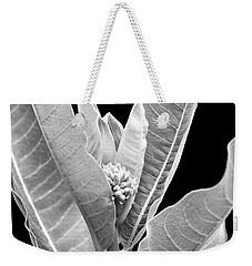 Weekender Tote Bag featuring the photograph Milkweed Black And White by Christina Rollo