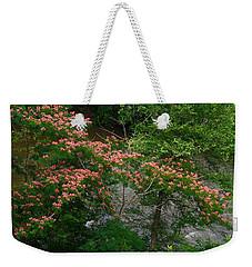Mimosa On The Dan River Weekender Tote Bag by Kathryn Meyer