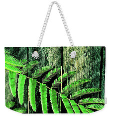 Mimosa Tree  II Weekender Tote Bag by Tony Grider