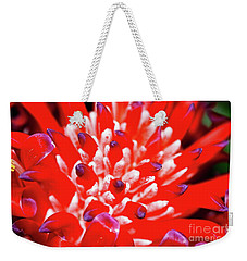 Weekender Tote Bag featuring the photograph Flaming Torch Bromeliad By Kaye Menner by Kaye Menner
