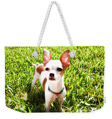 Mini Dog Weekender Tote Bag