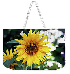 Weekender Tote Bag featuring the photograph Mini Sunflower by Jeff Severson